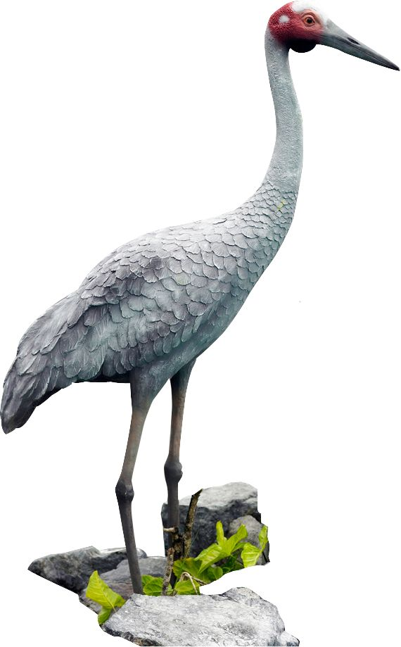 Top 46 best Fibreglass life size Animal Statue images on Pinterest  RD83