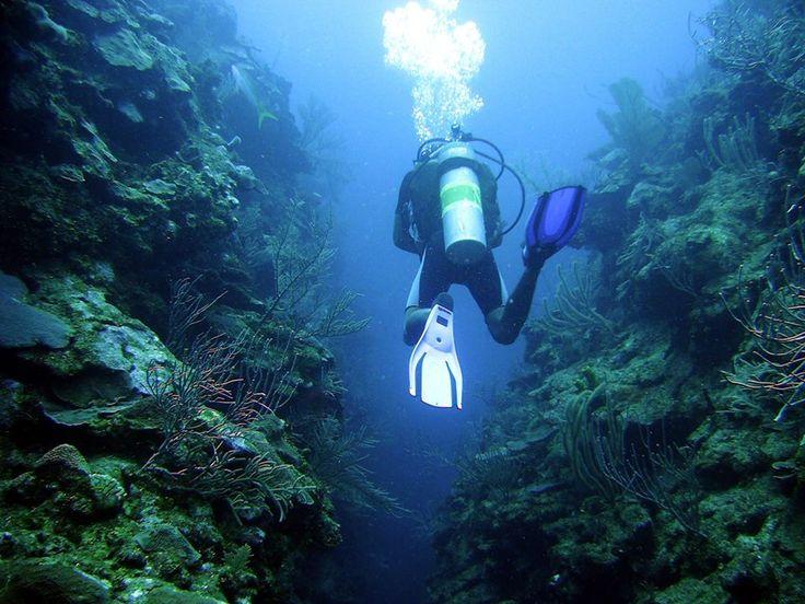 Scuba Dive Turneffe Atoll in Belize