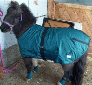 $8.00 horse blanket sew pattern
