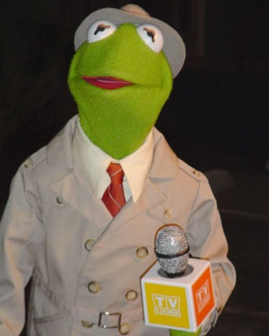 Kermit the Frog reporting.. this is how he looked when I first fell in love with him