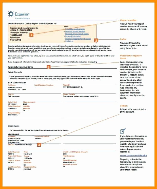 Fake Credit Report Template Lovely Fake Credit Report Template Lorgprintmakers Report Template Cash Flow Statement Good Credit