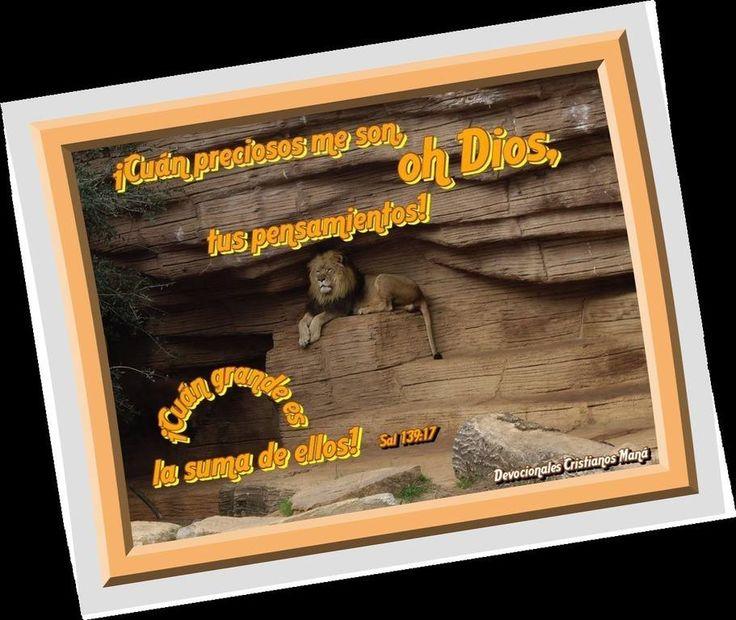 Sal 139:17 ¡Cuán preciosos me son, oh Dios, tus pensamientos! ¡Cuán grande es la suma de ellos!