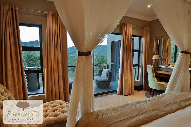 Standard Room ~ Shepherd's Tree Game Lodge ~ www.shepherdstree.co.za