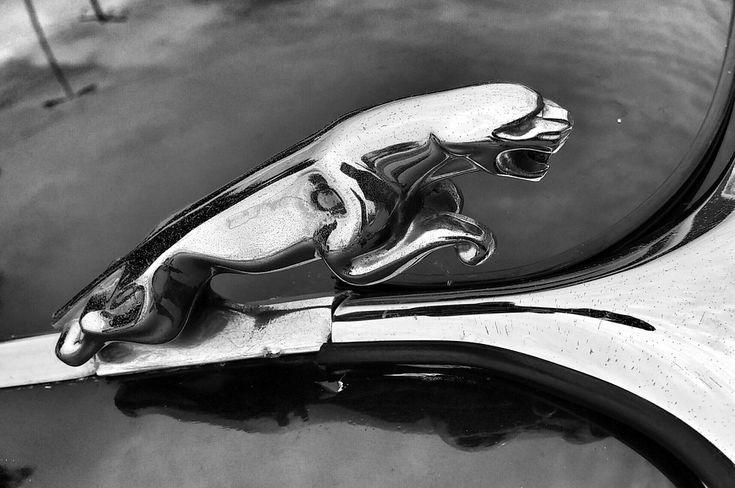 #bmw Jaguar Auto Bilder