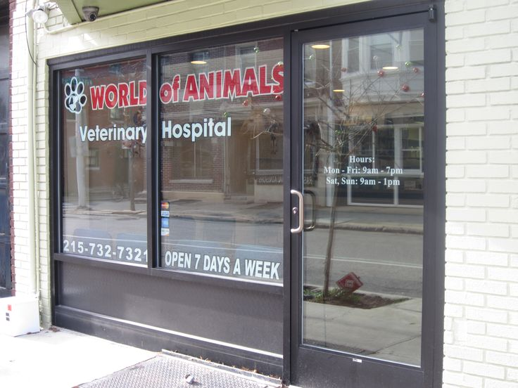 Virtual Office Tour of Our Rittenhouse Veterinary Hospital