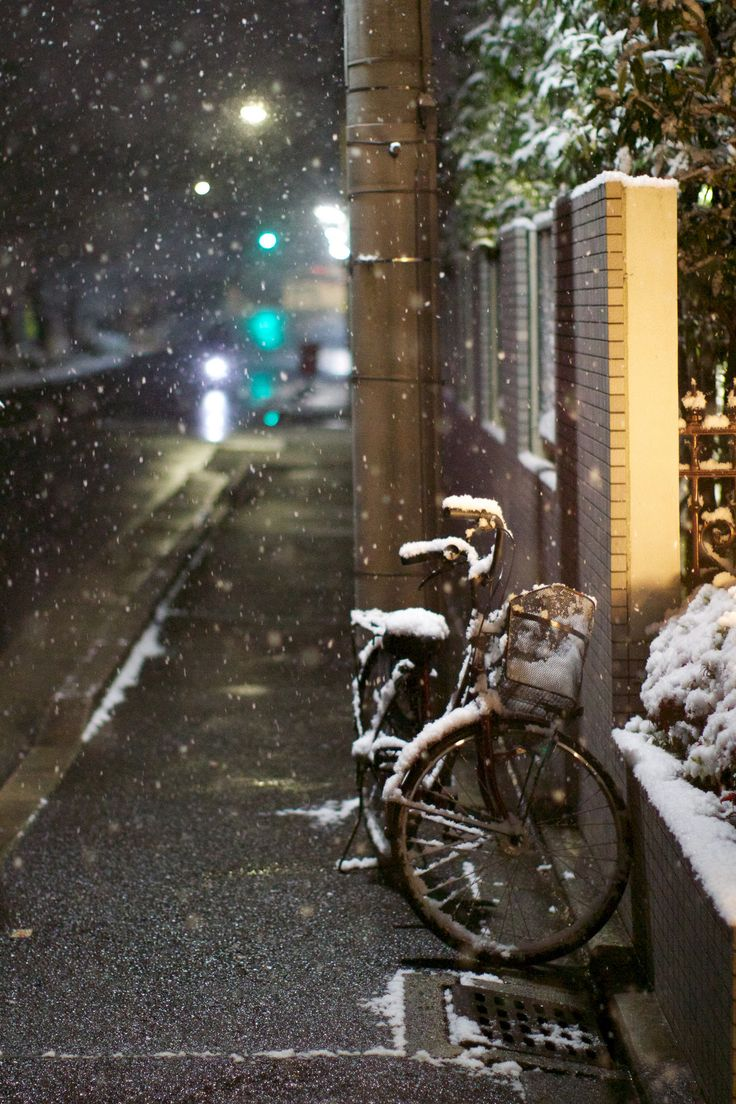 Bicycle in the snow, 2013 (outside of artist's apartment, Kyoto, Japan). David Calhoun