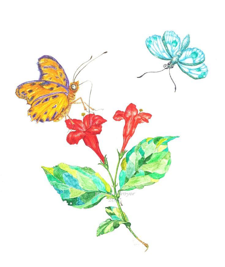 Weigelie, botanische Illustration, Aquarell, botanical watercolour, Gundula von Troyer