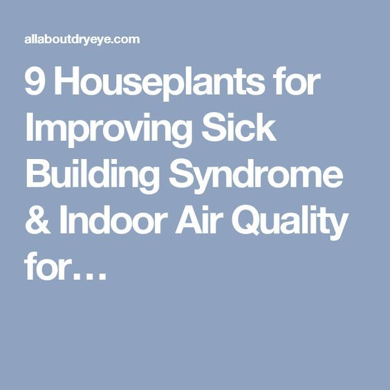 15 best ideas about indoor air quality on pinterest air for Best plants to improve air quality