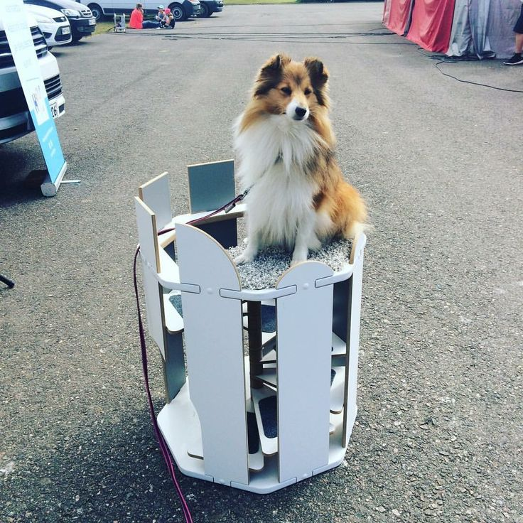 Pet tower for small dogs or cats.