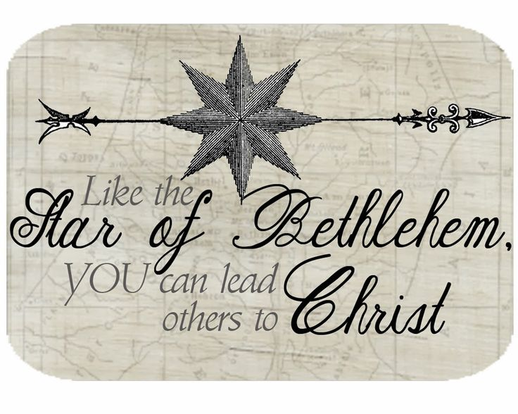 Two Ladies and a Blog: Search results for Star of Bethlehem