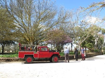 Peter's fire truck on show in the courtyard.