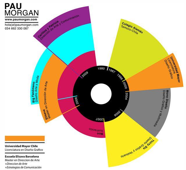 25 Best Visual Resume CV Images On Pinterest Infographic
