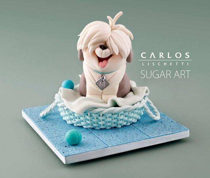 Carlos Lischetti: Monty, The Sheepdog / Monty, el perrito ovejero