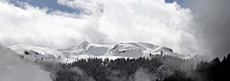 Bild: Gerhard Fechtig - Berg Panorama
