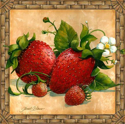 """Strawberries"" by Janet Stever"