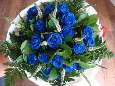 Mooie blauwe rozen...