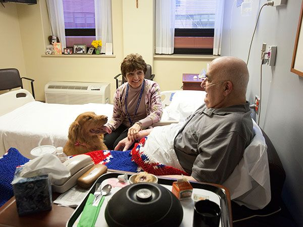 As Dolores Esposito makes the rounds of hospice patients at Holy Redeemer Hospital each Monday with her dog, Daisy, she doesn't tell them why she and the brawny red golden retriever became a pet-therapy team.