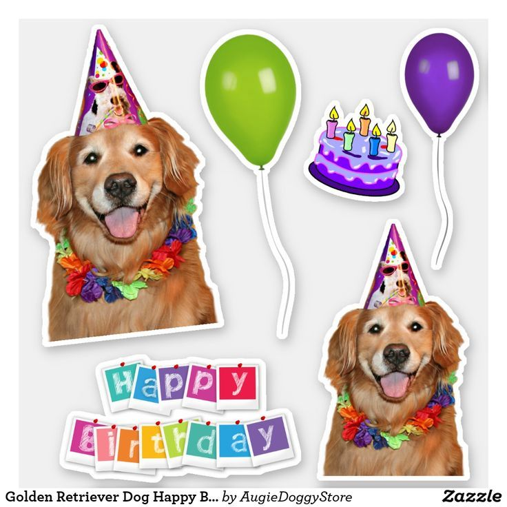 Golden Retriever Dog Happy Birthday Group Sticker Zazzle Com
