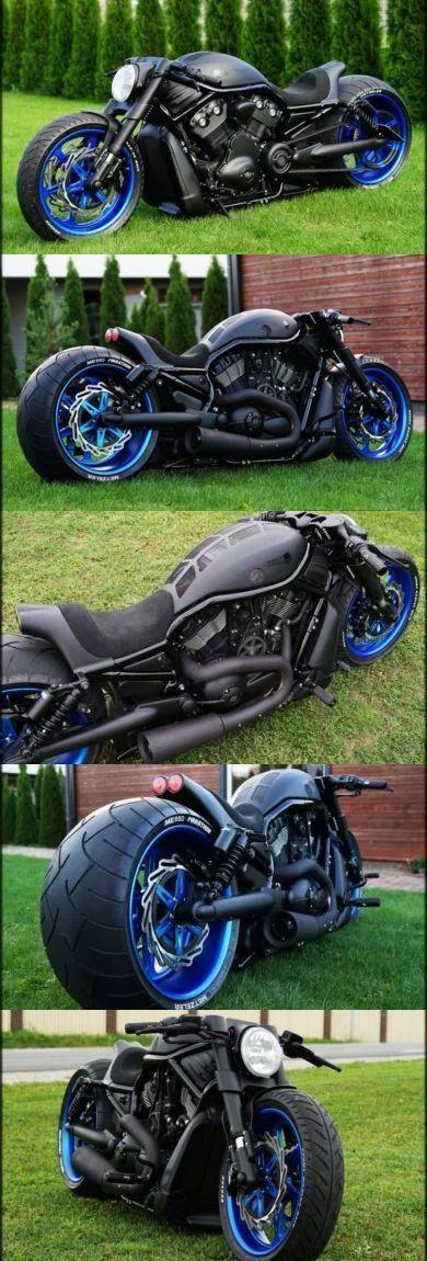 "Harley Davidson Night Rod Custom ""Suzuka"""