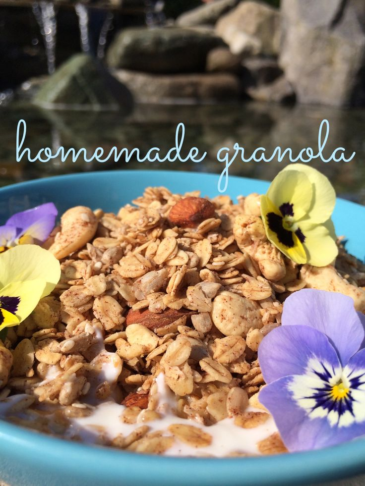 Are You Spending Way Too Much on Granola? Stop!! Save your money and make my recipe. My Homemade Granola Recipe, makes a huge batch (16 cups), is sugar free, and is so much cheaper than store bought.