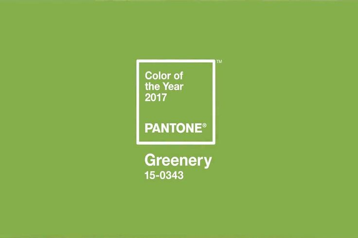 Pantone has spoken! Next year's color of the year is Greenery. The Pantone Color Institute chooses a color each year, after examining manufacturing and design trends across several industries…