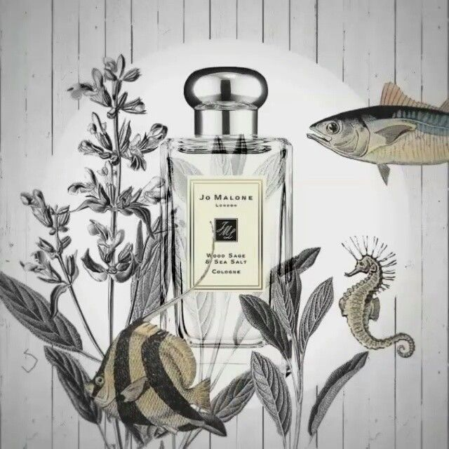 """""""Mi piace"""": 299, commenti: 15 - X-SCNT (@ex.scent) su Instagram: """"X-SCNT LOVES Wood Sage & Sea Salt by Jo Malone @jomalonelondon @jomalonelondon_sg @_jomalone_shop…"""""""