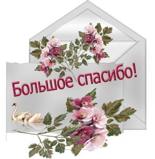 Красивые открытки спасибо благодарю спасибо за внимание, открытки