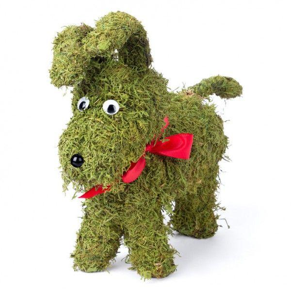 Niedlicher Mooshund Von Pflanzen Kölle. Die Vielseitig Zu Dekorierende  Hundefigur Aus Echtem Moos überzeugt