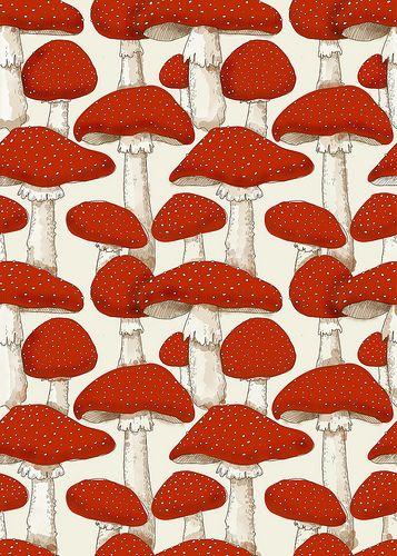 red mushrooms by aprintaday, via Flickr