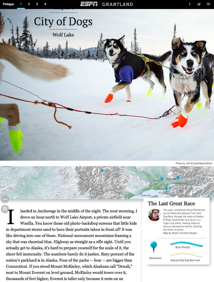 Immersive storytelling ESPN's Grantlandm which is all about an epic sled dog race, ticks lots of boxes. It makes use of image galleries, maps that auto-adjust as you progress through the article, full-width pictures, has excellent