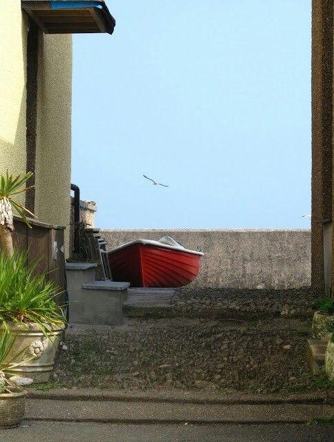 Seagull Boat