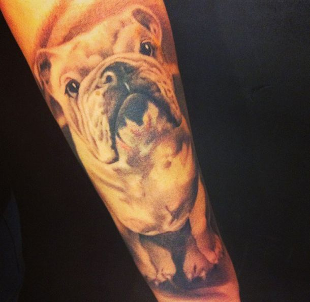 36 best english bulldog tattoos images on pinterest bull terrier dog dog paws and doggies. Black Bedroom Furniture Sets. Home Design Ideas