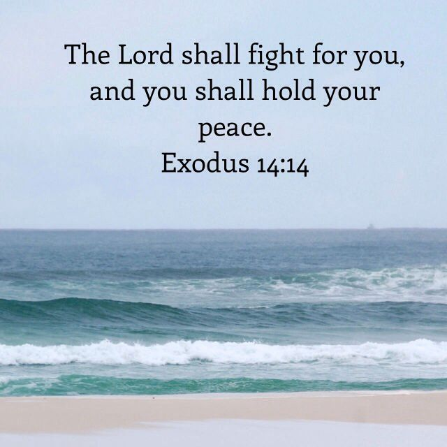 1000 ideas about exodus 14 14 on pinterest fight for