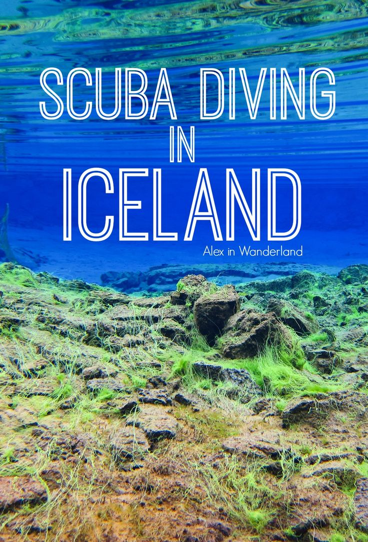 One of my greatest adventures yet: Scuba diving in the neon blue waters of Iceland | Alex in Wanderland
