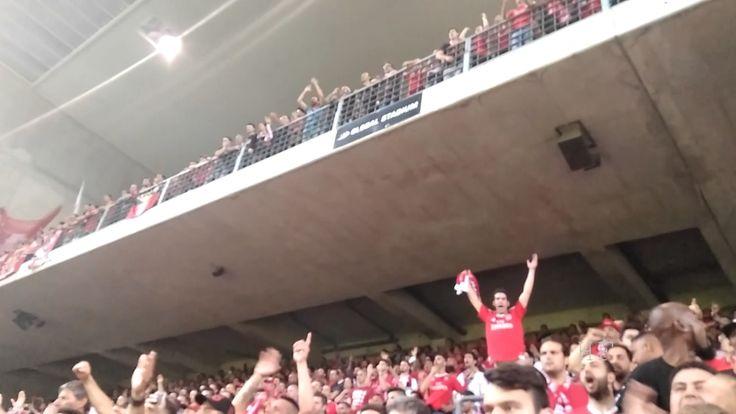 Festa dos adeptos Benfica no Bessa | Cânticos