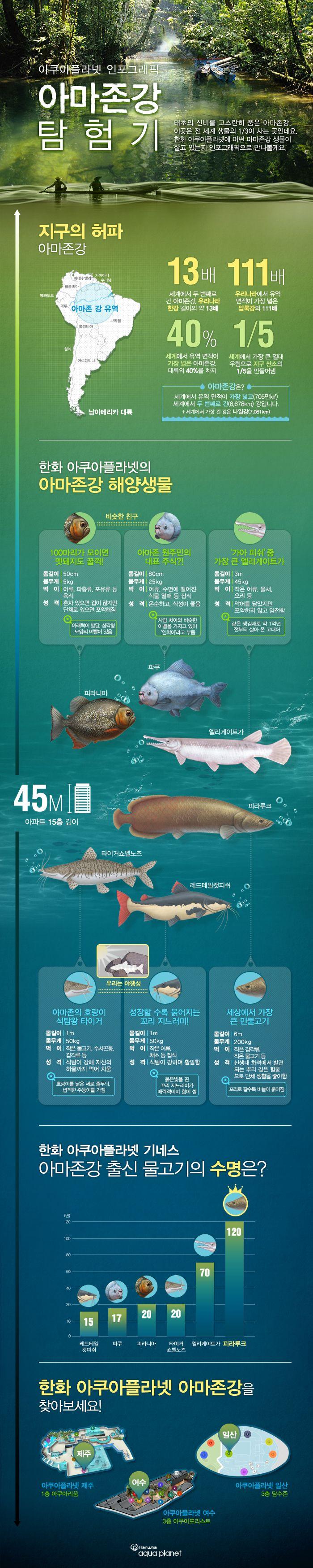 아마존강 해양생물에 관한 인포그래픽
