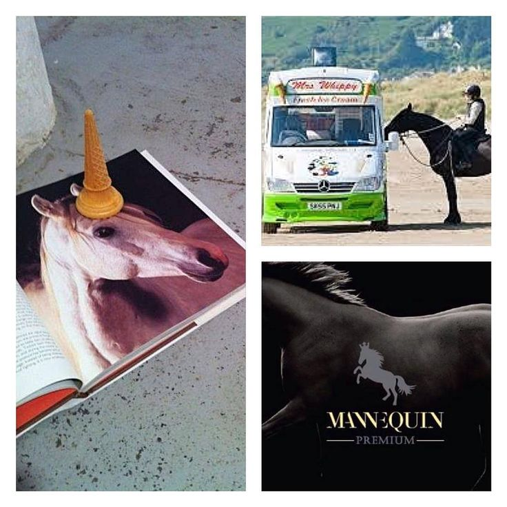 ... sweet memories of warmer days ... #equestrian #summer #unicorn #icecream #memories #mannequin #trencin #slovakia