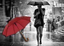 Készülj az esősebb őszi hónapokra masszív, fanyelű esernyőkkel, lásd el velük akár az egész családot!