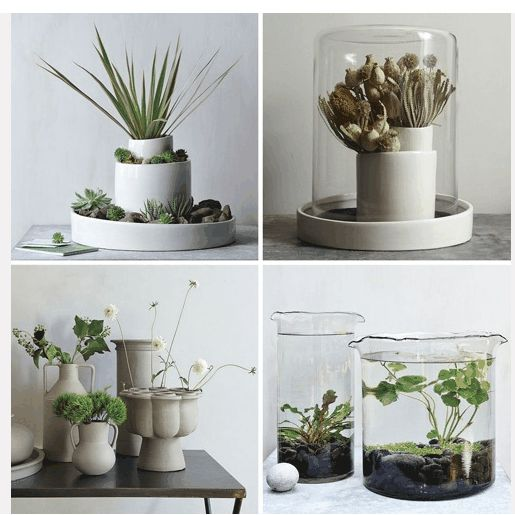 17 best images about decorcion con plantas on pinterest