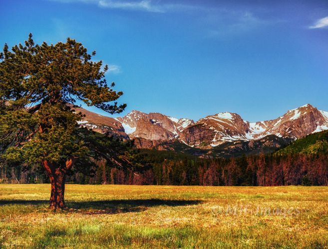 17 best images about rocky mountain national park on for Rocky mountain state park cabins
