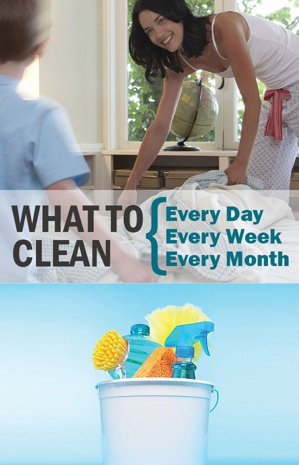 "The cleaning pros behind Consumer Reports' ""How to Clean Practically Anything,"" suggest the following cleaning schedule for routine upkeep."