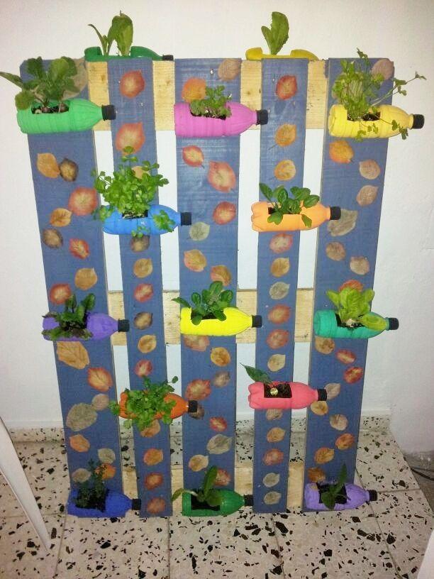 Haz tu propio huerto vertical con material reciclado