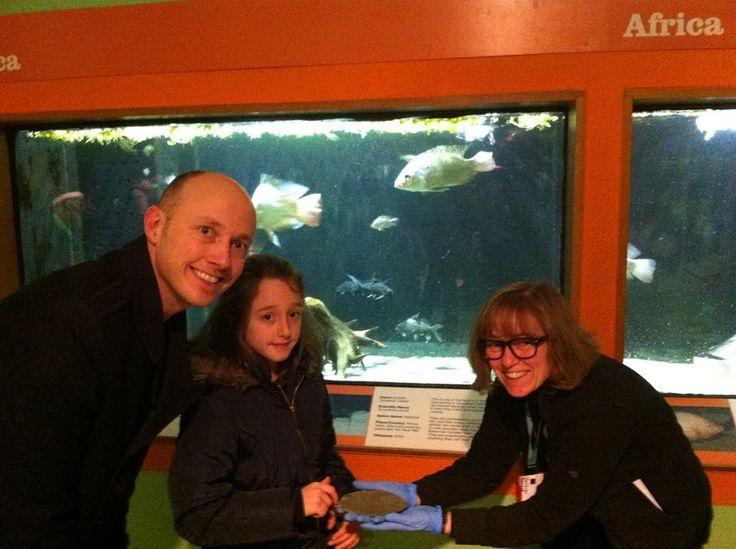 Object handling in the Aquarium