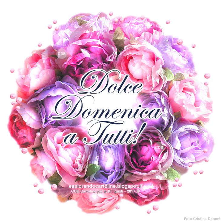 CDB CARTOLINE Compleanno per Tutti i Gusti! : Cartolina - Dolce DOMENICA a Tutti! - Con Immagine...