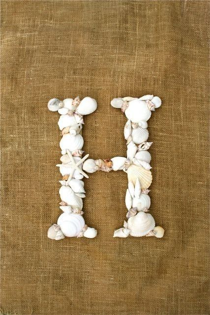 ways to display sea shells -think I want to make this  for beach bedroom