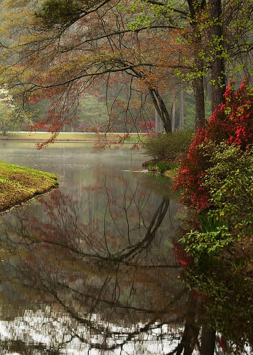 17 Best Images About Callaway Gardens On Pinterest Gardens Acrylics And Paint