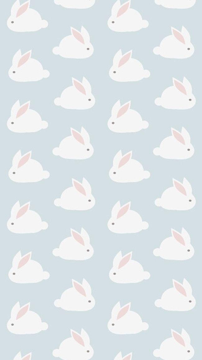 Snuggly Bunny Rabbit Iphone Wallpaper Baby Animals Funny Rabbit Wallpaper Cute Baby Bunnies