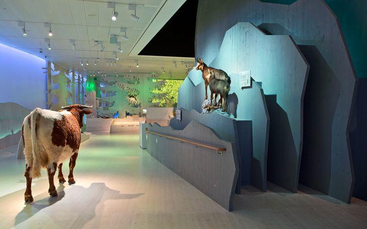ATELIER BRÜCKNER: Haus der Berge, Berchtesgaden, Permanent exhibition, 2013