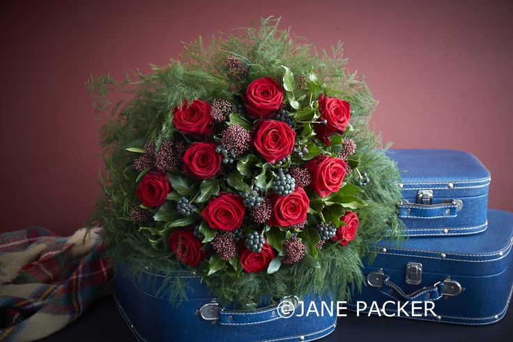 A dozen large headed plump ruby red Roses with bewitching Berried Ivy and pretty Skimmia interwoven, surrounded by a mass of fluffy forest green Fern