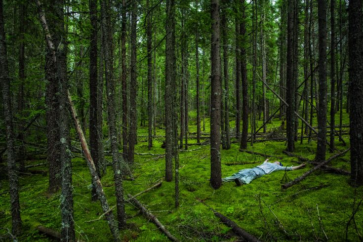 Relaxing in the forest of Pukaskwa National Park